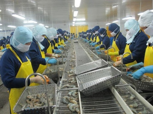 VASEP proposes to overcome difficulties for fishery enterprises overcoming Covid-19 epidemic