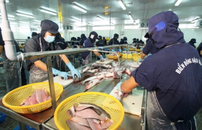 Pangasius opportunity to expand the market