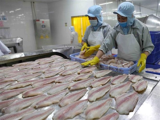 Pangasius industry is likely to recover completely from Q3